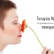 terapias naturales menopausia