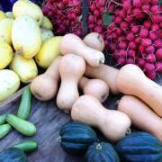 la nutrición en la menopausia